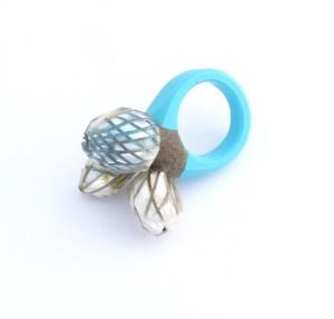 Ring 2013