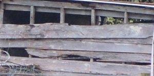 Detail4
