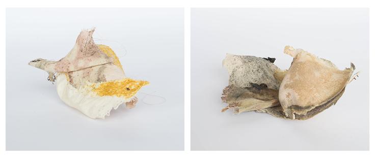 BL shoe images2